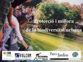 Protecci� i millora  de la biodiversitat urbana