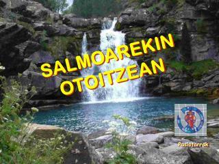 SALMOAREKIN OTOITZEAN