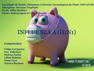 Faculdade de Saúde, Humanas e Ciências Tecnológicas do Piauí- NOVAFAPI
