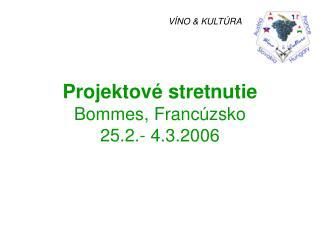 Projektov� stretnutie Bommes, Franc�zsko 25.2.- 4.3.2006