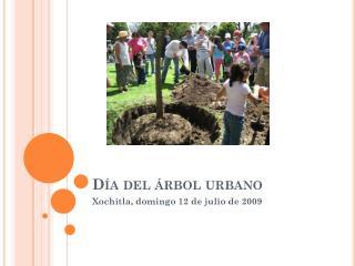 Día del árbol urbano