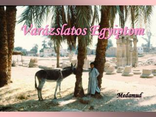 Var�zslatos Egyiptom