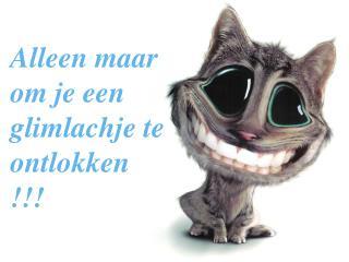 Alleen maar om je een glimlachje te ontlokken  !!!