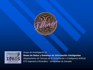 Grupo de investigación en  Bases de Datos y Sistemas de Información Inteligentes