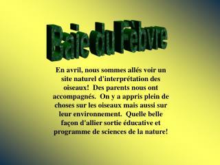Baie du Fèbvre