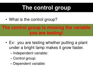 The control group