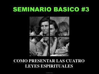 SEMINARIO BASICO #3