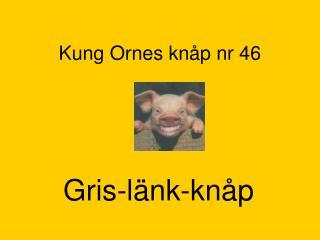 Kung Ornes knåp nr 46