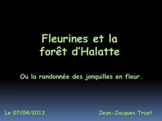 Fleurines et la forêt d'Halatte
