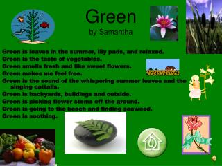 Green by Samantha