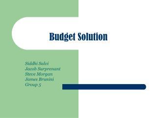 Budget Solution