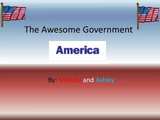 The Awesome Government
