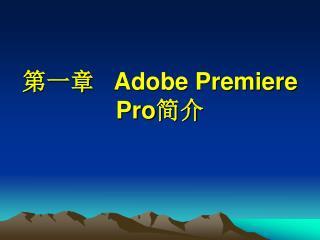 ???    Adobe Premiere Pro ??