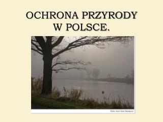 OCHRONA PRZYRODY  W POLSCE.