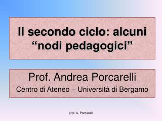 """Il secondo ciclo: alcuni """"nodi pedagogici"""""""