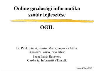 Online gazdasági informatika szótár fejlesztése OGIL