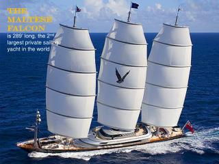 The Maltese Falcon is 289� long, the 2 nd  largest private sailing yacht in the world