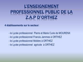 L�ENSEIGNEMENT PROFESSIONNEL PUBLIC DE LA Z.A.P D�ORTHEZ