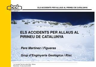 ELS ACCIDENTS PER ALLAUS AL  PIRINEU DE CATALUNYA