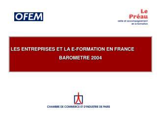 LES ENTREPRISES ET LA E-FORMATION EN FRANCE BAROMETRE 2004