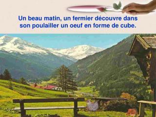 Un beau matin, un fermier découvre dans son poulailler un oeuf en forme de cube.