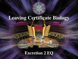 Excretion 2 EQ