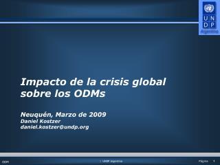 Impacto de la crisis global sobre los ODMs Neuquén, Marzo de 2009 Daniel Kostzer