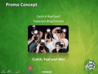 Promo Concept