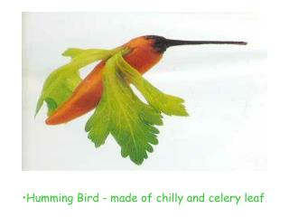 Humming Bird - made of chilly and celery leaf