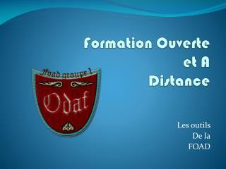 Formation Ouverte et A Distance