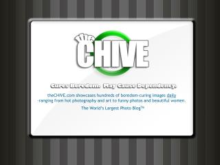theCHIVE showcases hundreds of boredom-curing images  daily