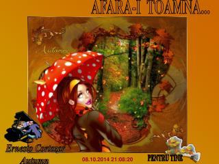 AFARA-I  TOAMNA...