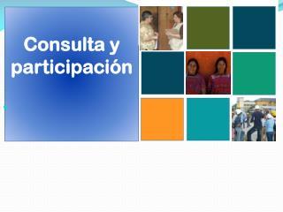 Consulta y participaci�n
