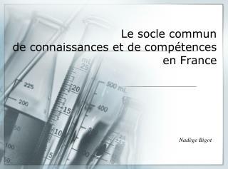 Le socle commun  de connaissances et de compétences en France