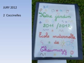 JURY 2012 2  Coccinelles