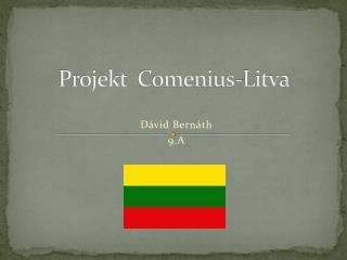 Projekt   Comenius-Litva