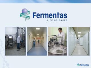 Pasaulinėje rinkoje Fermentas yra žinomas kaip išskirtinės kokybės produktų tiekėjas