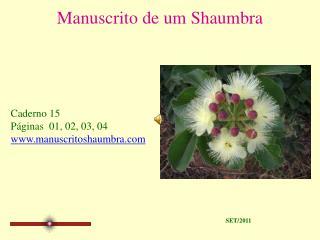 Manuscrito de um Shaumbra