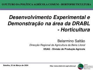 Desenvolvimento Experimental e Demonstra  o na  rea da DRABL - Horticultura