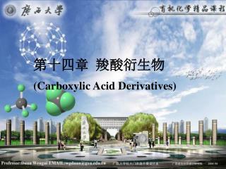 第十四章 羧酸衍生物 (Carboxylic Acid Derivatives)