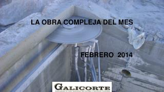 LA OBRA COMPLEJA DEL MES  FEBRERO  2014