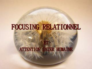 FOCUSING RELATIONNEL