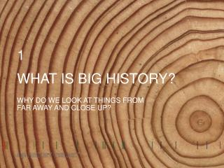 WHAT IS BIG HISTORY?