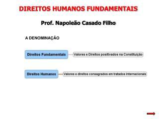 DIREITOS HUMANOS FUNDAMENTAIS Prof. Napoleão Casado Filho