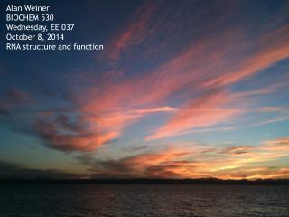 Alan Weiner BIOCHEM 530 Wednesday, EE 037 October 8, 2014 RNA structure and function