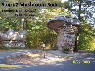Stop #2  Mushroom  Rock