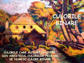 CULORILE BINARE