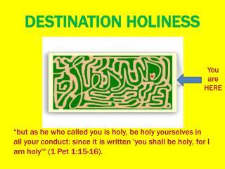 DESTINATION HOLINESS
