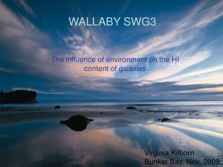 WALLABY SWG3