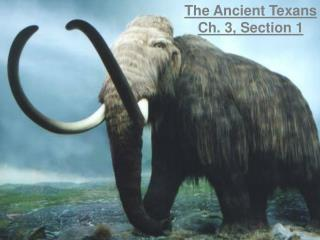 The Ancient Texans Ch. 3, Section 1
